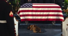 mil dog at funeral